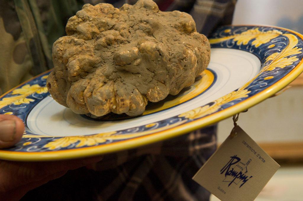La Sosta Navarra, Mostra del tartufo di Gubbio